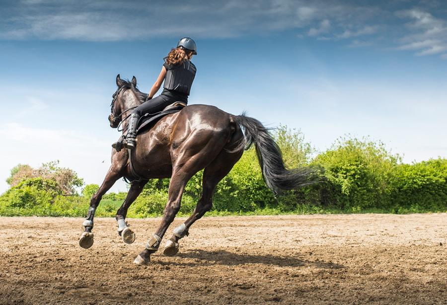 horse-riding-horse-galloping-with-rider