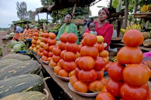queen-of-katwe-women-sell-vegetables-on-the-road-to-murchison-falls