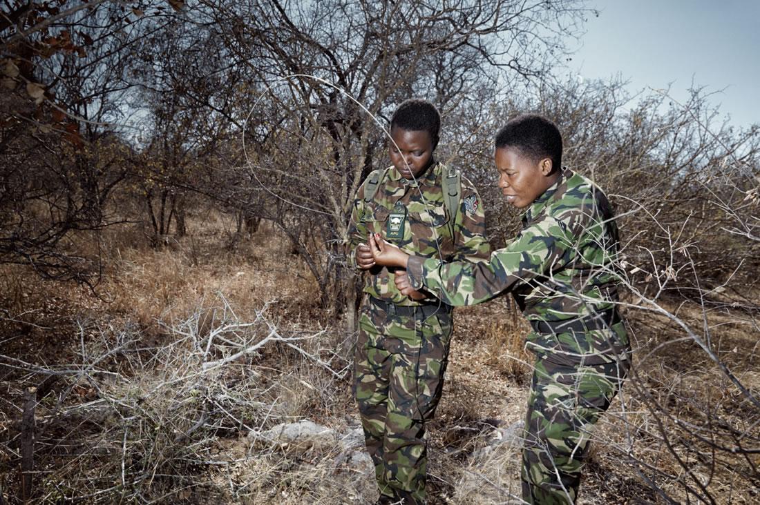 Black Mambas Women Anti-poaching Unit - two-women-untangling-wire-trap