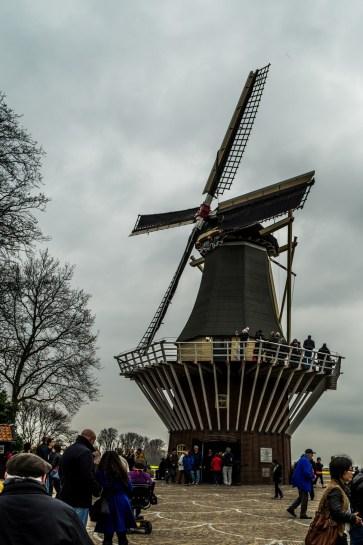 amsterdam kwiecień -19 (Kopiowanie)