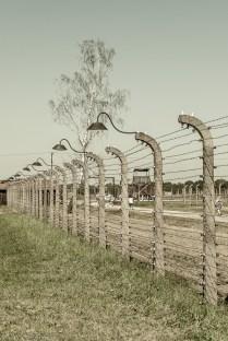oświęcim-64 (Kopiowanie)