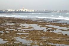 Casablanca - nadbrzeże oceanu