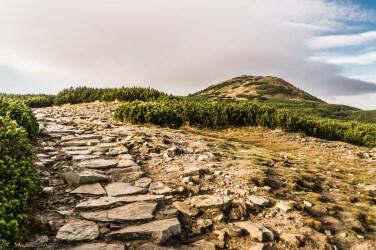Babia Góra - szlak do szczytu