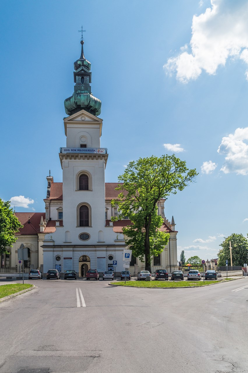 Zamość - Katedra