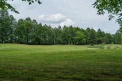 pole golfowe ogrody zamkowe - baranów sandomierski
