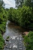 rzeka płynąca wśród drzew