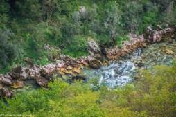 kanion rzeki Tary czarnogóra