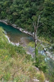 rzeka moraca - granicy albanii i czarnogóry