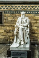 Londyn - Natural History Museum, Karol Darwin