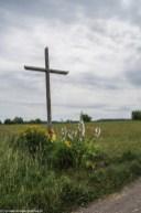 natura krzyż