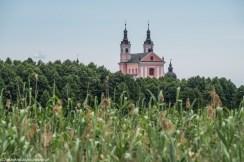 krajobraz kościół wigry trawy las