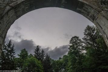 widok na niebo i las pod półkolistym przęsłem betonowym