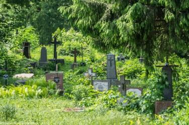 nagrobki zieleń miejska cmentarz suwałki