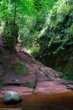 skały czerwone i zieleń drzew