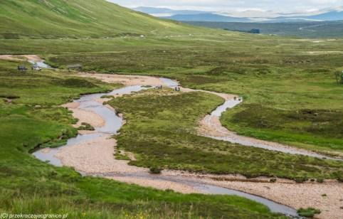 rzeka przepływająca przez dolinę górską