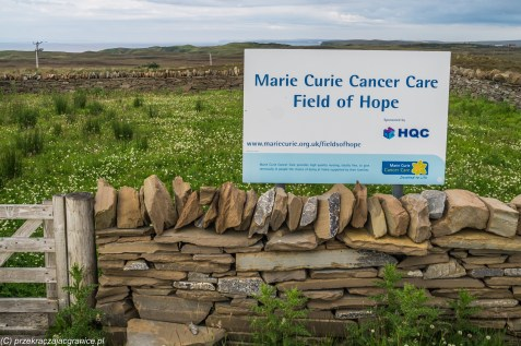 Field of Hope - Marie Curie Cancer Care