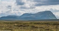 Moine torfowisko panorama