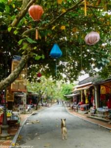 środkowy wietnam - hoi an ulica lampiony spacer