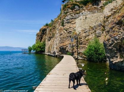 ochryda na weekend - kładka nad jeziorem ochrydzkim pies przewodnik