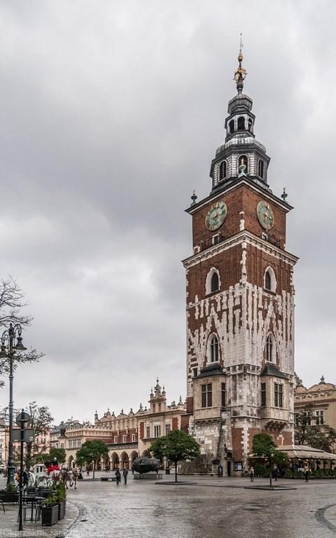 Wieża ratuszowa - co zobaczyć w Krakowie