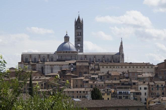 Siena - widok na katedrę