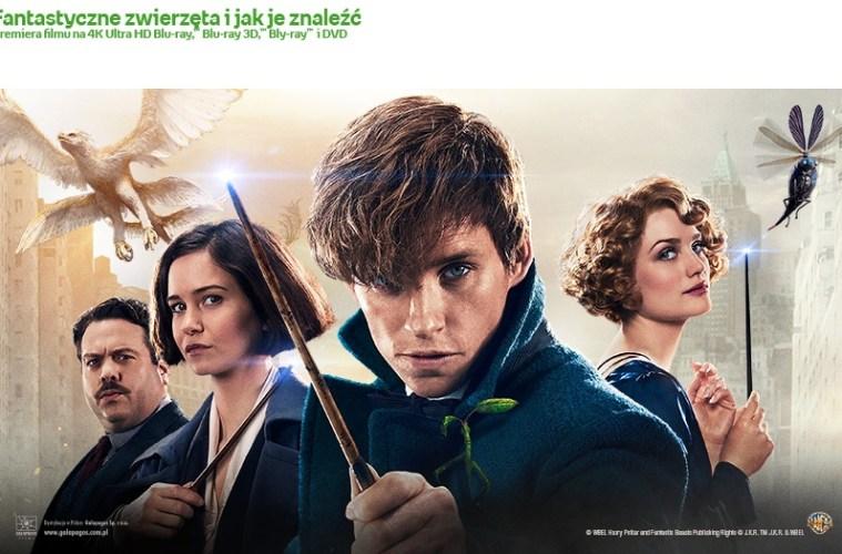 WarszawaJunior_20170411_Fantastyczne_Zwierzeta_FB