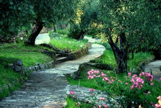Ogrod iris we Florencji