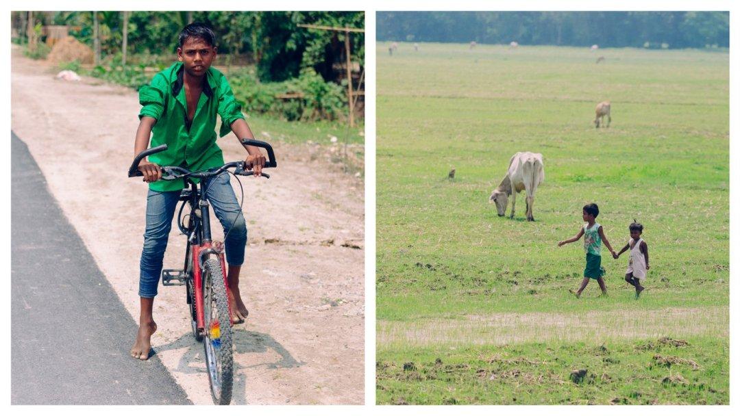 Wiejskie Indie, Assam