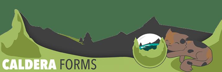 Caldera Forms – More Than Contact Forms