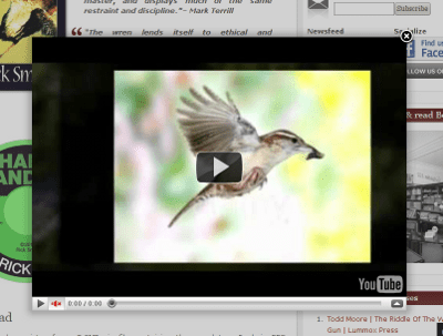 <p>Example of a YouTube movie in overlay.</p>