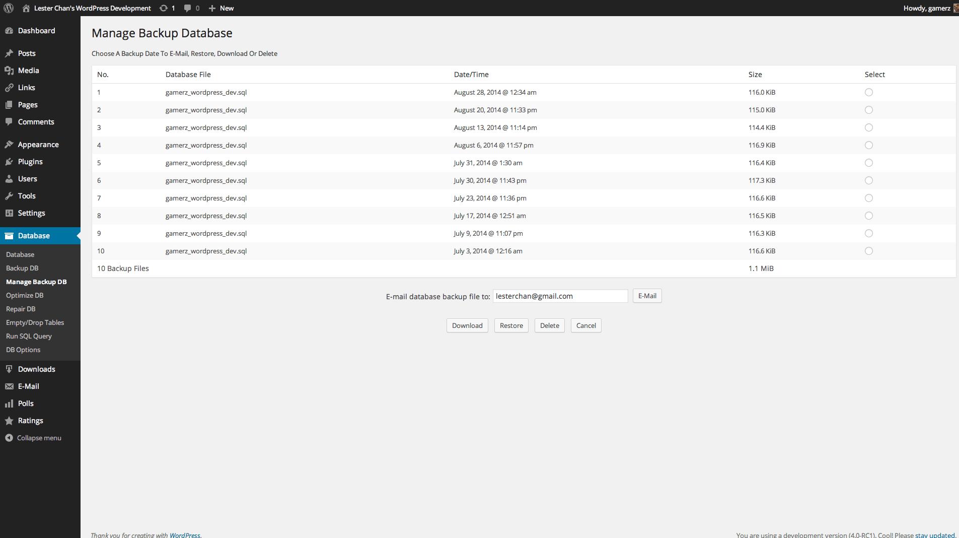 WP-DBManager Capture d'écran