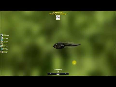 Головастик, ловля бонусной наживки в игре Trophy Fishing 2