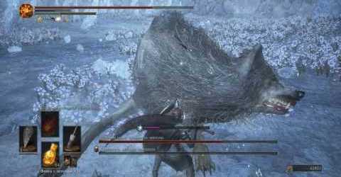 Dark Souls III — Хранитель могилы чемпиона и великий волк, хранитель могилы