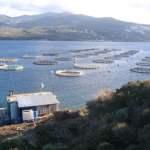 Εγκρίθηκε το ελληνικό Επιχειρησιακό Πρόγραμμα Αλιείας και Θάλασσας