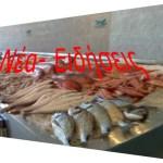 Πως θα ξεχωρίσετε αν το ψάρι που σας πωλούν είναι φρέσκο