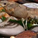 Απαγόρευση αλιείας της καραβίδας από 15 Φεβρουαρίου μέχρι 15 Μαΐου