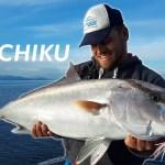 Το πιο εύκολο ψάρεμα από βάρκα – Inchiku
