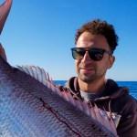 Φοβερή ψαριά στην Σύρο- 12 κιλά τσαούσι