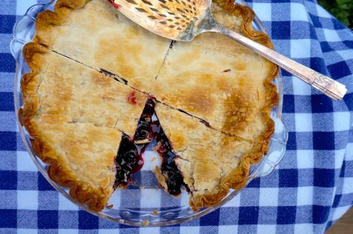 Saskatoon Berry Pie