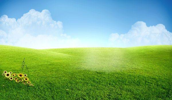 Beautiful grassland PSD