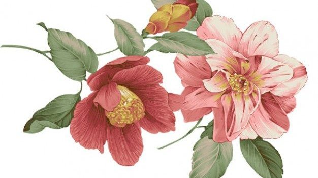 chinese style   floral patterns psd layered material