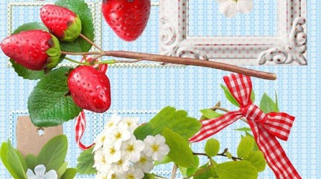fresh strawberries and photo frame psd layered