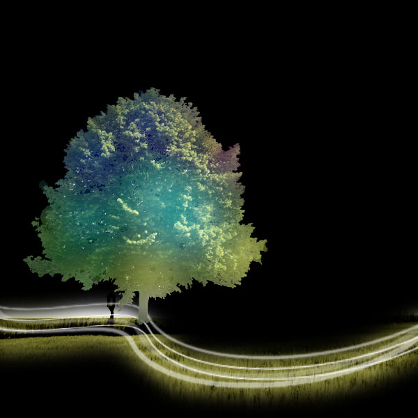 tree18 Create a Magical Image using Photo Manipulation