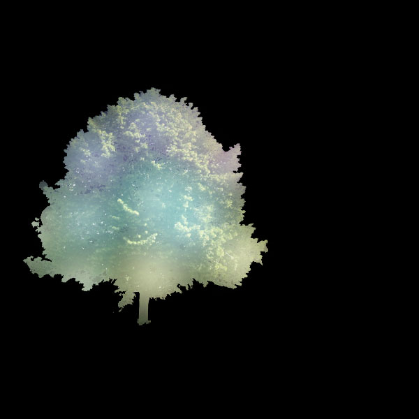 tree9 Create a Magical Image using Photo Manipulation