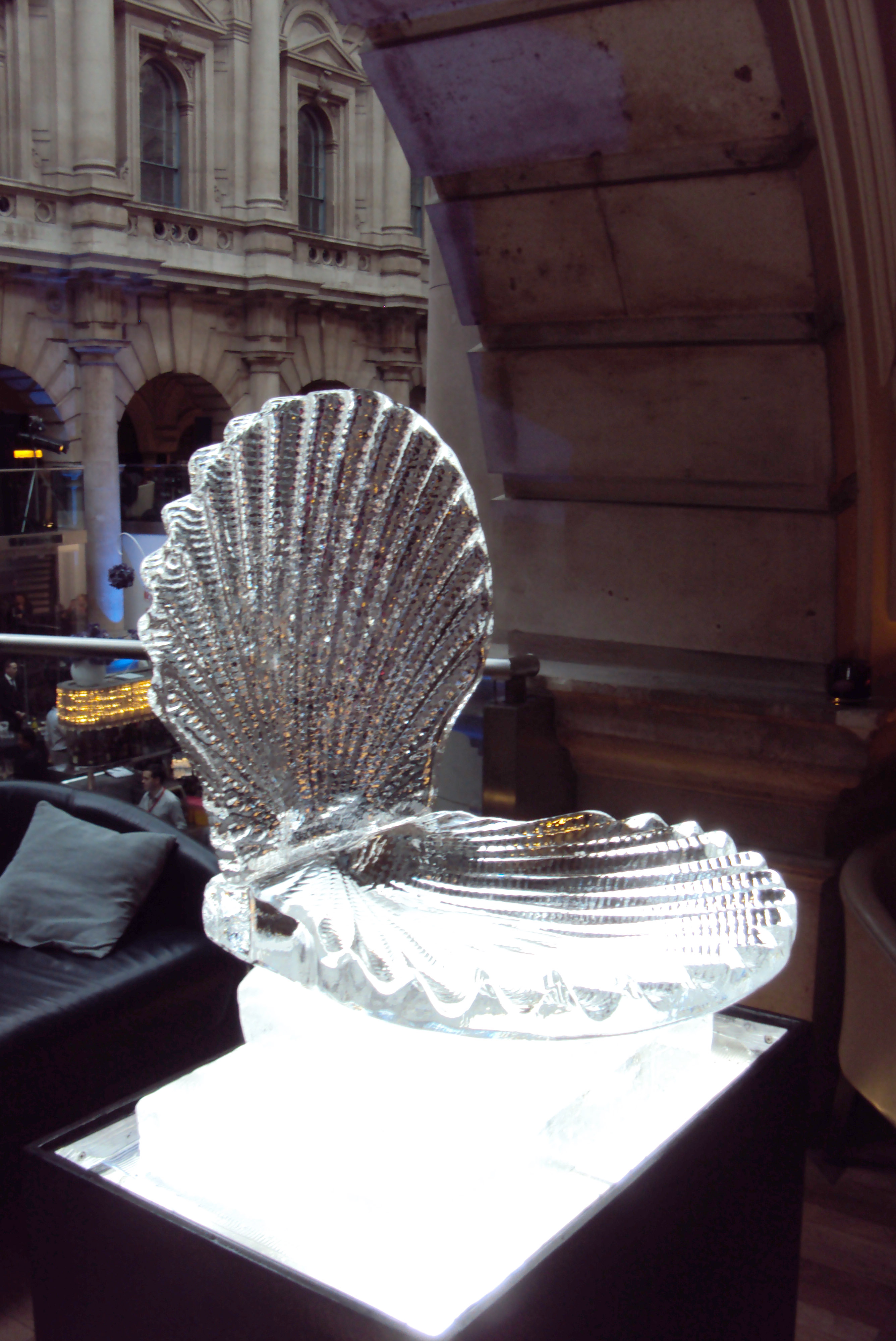 Open Scallop - Food Display shell (1)