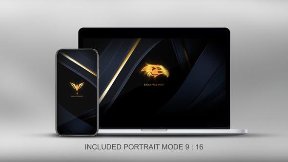 Videohive Quick Elegant Luxury Logo 25800997
