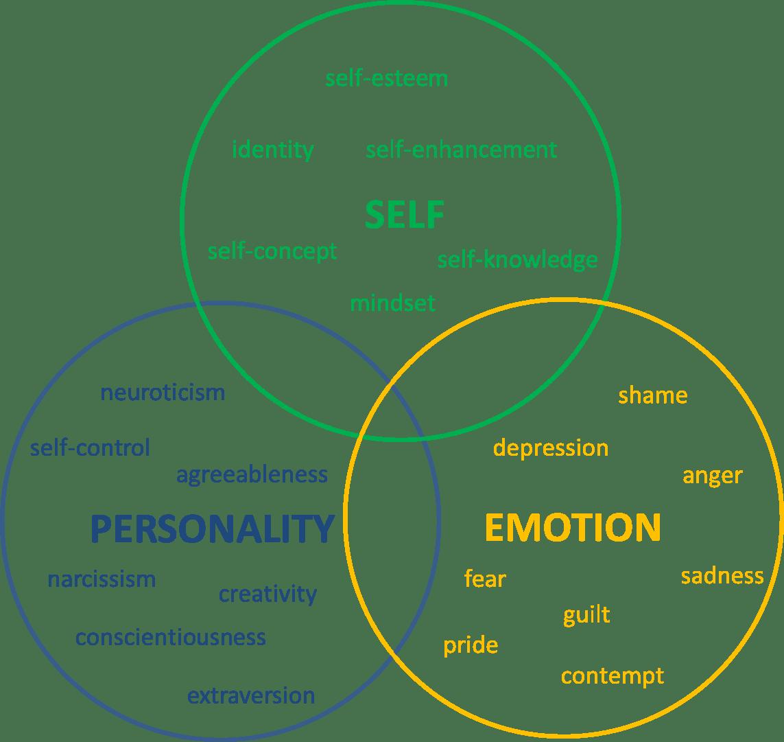 Personality Self And Emotion Laboratory Richard W Robins