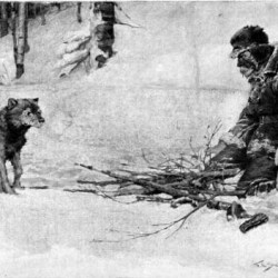 https://www.frankschoonover.org/0-1000/301-400/329-his-eyes-chanced-on-the-dog/