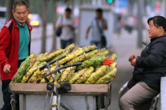 This street vendor, the woman on the right, is selling full sunflower heads.