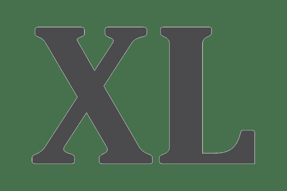 Download Roman Numeral XL transparent PNG